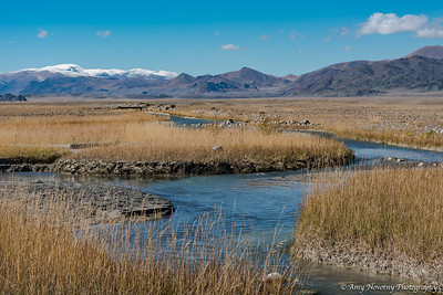 Meandering stream in the Altai Mountains