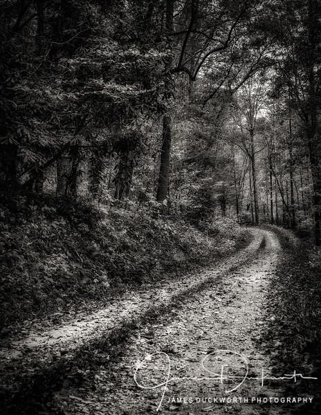 Unfamiliar Road