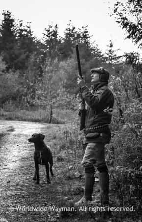 Gun & Dog
