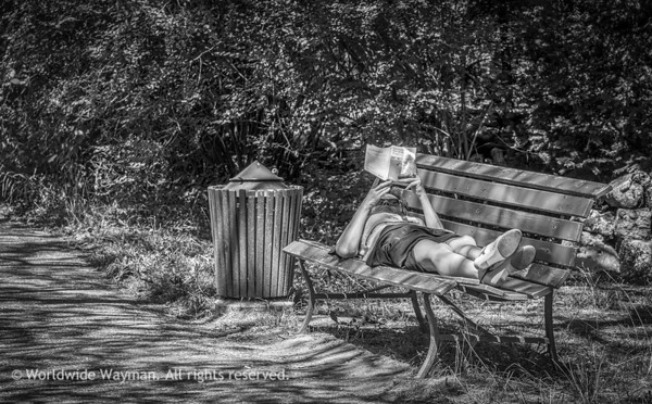 Park Bench Relaxation