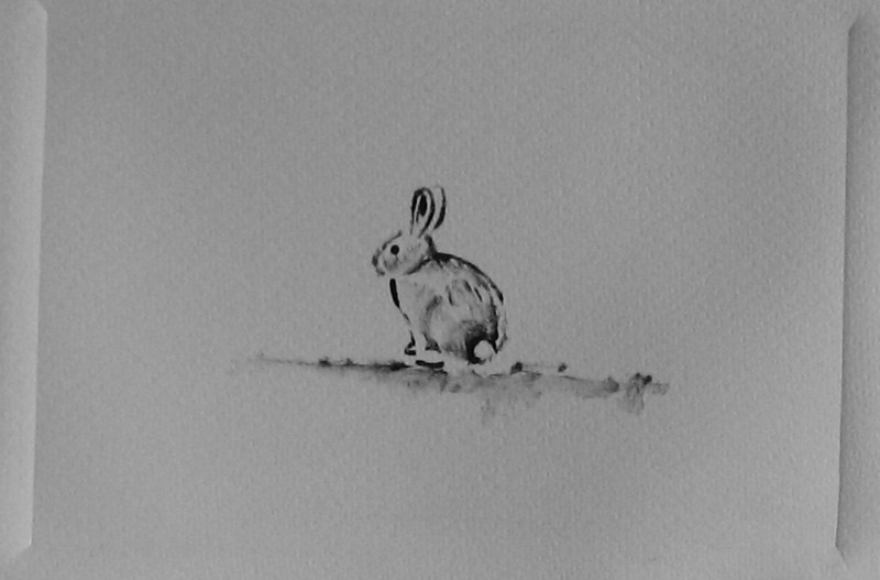 Rabbit , Monotype Print, 2010