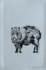 Javalina Card, Monotype Print, 4x6 2010