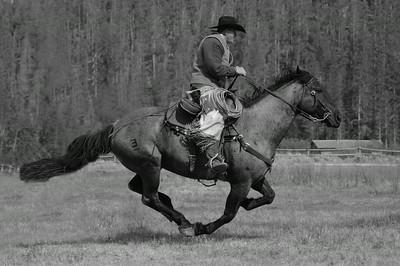 Running Horse bw