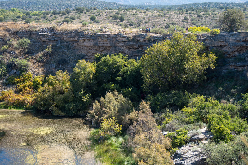 The foliage beside Montezuma Well