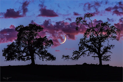 Crescent at Dusk, Sierra Foothills, California