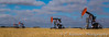 Oil production pumpers in a grain field in the Bakken field near Stoughton, Saskatchewan, Canada.