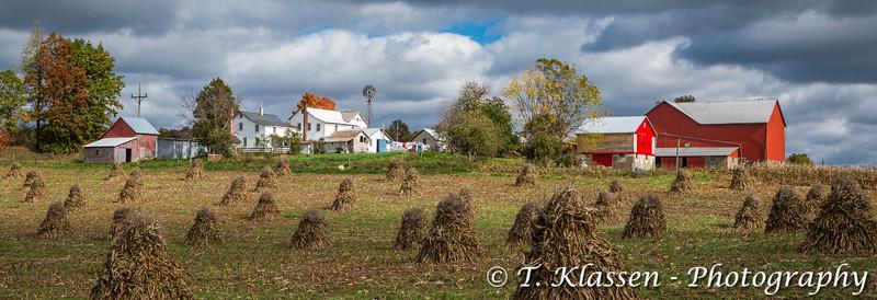 An Amish farm and corn shocks in the field near Mt. Eaton, Ohio, USA.