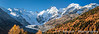 The snow capped Bernina peaks, Morteratsch Glacier and fall foliage color in the Bernina Valley, Switzerland, Europe.