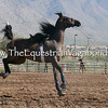 Creative Lunging II
