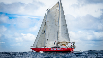 Southern Ocean Recovery