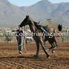 Creative Lunging V