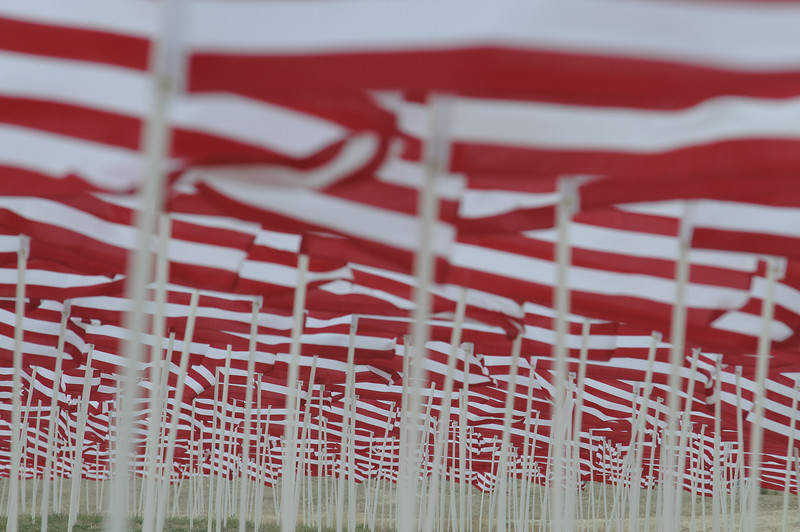 2,010 Flags set up on the inside of the Club House turn Complex, for Memorial Day.