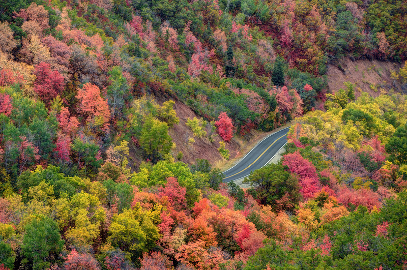 Autumn Drive Through East Canyon - Utah