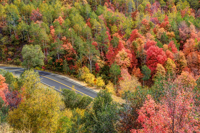 Autumn Drive Through East Canyon - Utah