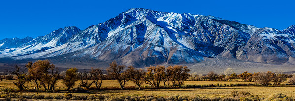 Eastern Sierra Nevada Panorama - Bishop - California