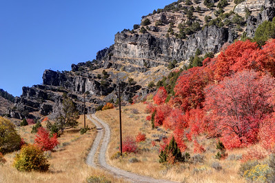 Road Less Traveled - Blacksmith Fork Canyon - Utah