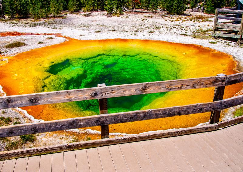 Morning Glory Hot Springs - Yellowstone National Park