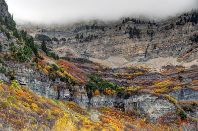 Fall At Mt. Timpanogos - Utah