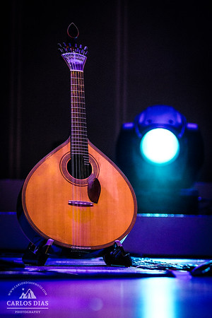 Guitarra Portuguesa // Portuguese Guitar