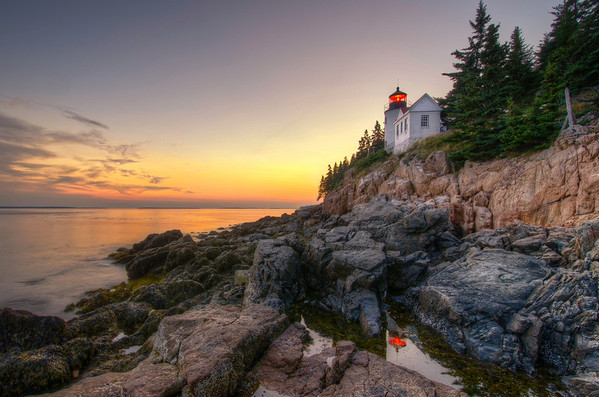 Bass Harbor Lighthouse Reflected in Tidal Pool