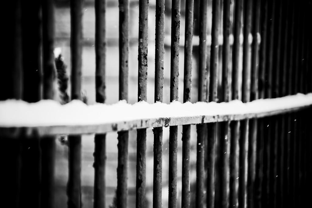 Line of snow