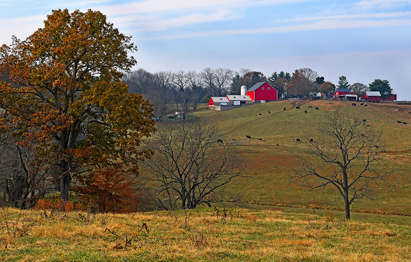 Fall in Harford County