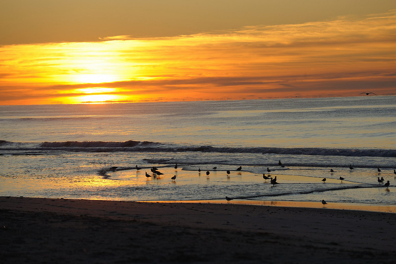 Sunrise At Jones Beach - Long Island, NY