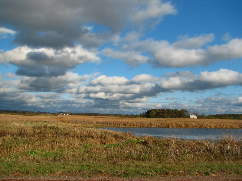 Just a sample of where I started-this is Crex Meadows in upper Wisconsin. I wished I had known a lot more about photography then!