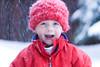 Henry snow Idaho