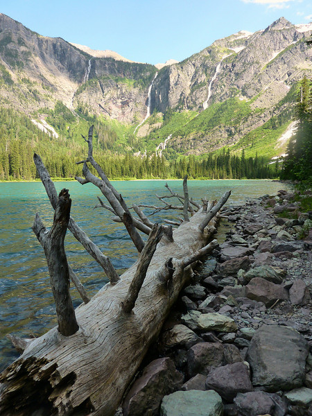 View from Avalanche Lake, Glacier N.P.