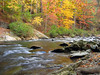 Fall on the Tellico River, Cherokee N.F.