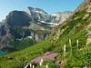 Grinnell Glacier Trail, Glacier National Park.