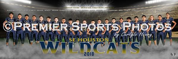 SE Houston Wildcats 30x10