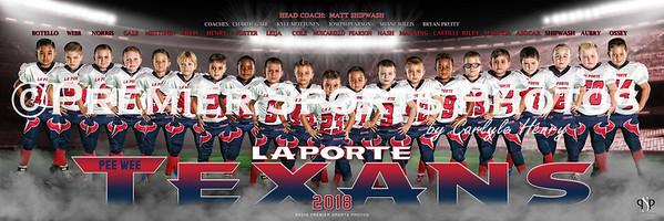 LP Texans 1 Pee-Wee 30x10