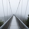 """Granfather Mountain Mile High Swinging Bridge"""