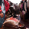 DASHAIN FESTIVAL. 9 th DAY. THE SACRIFICE OF THOUSENDS OF GOATS IN THE KALIKA MANDIR TEMPLE. GORKHA. NEPAL.