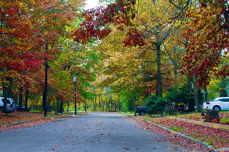 <center>IMG#5483  Glassboro, NJ...2012 Autumn in Suburbia. <center>