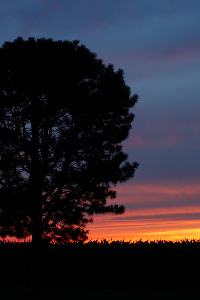 IMG#172<br /> Fourth of July Sunset-Deerfield, New Jersey 2009