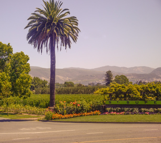 Entrance to St. Supery Vineyard, seen from the Napa Valley Wine Train