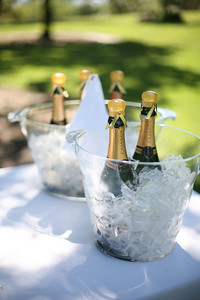 Champagne on ice at Domaine Chandon, Napa Valley, California