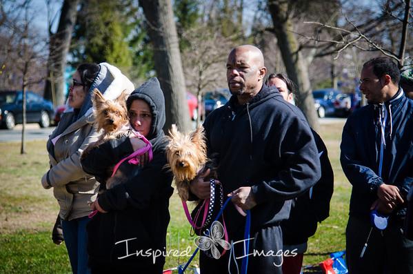 Narrative Photography: Providence Animal Rescue League
