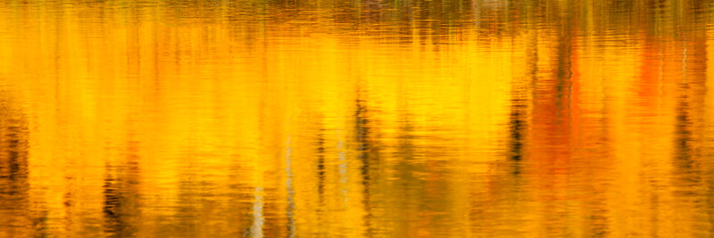 Abstract of fall color on lake in Colorado