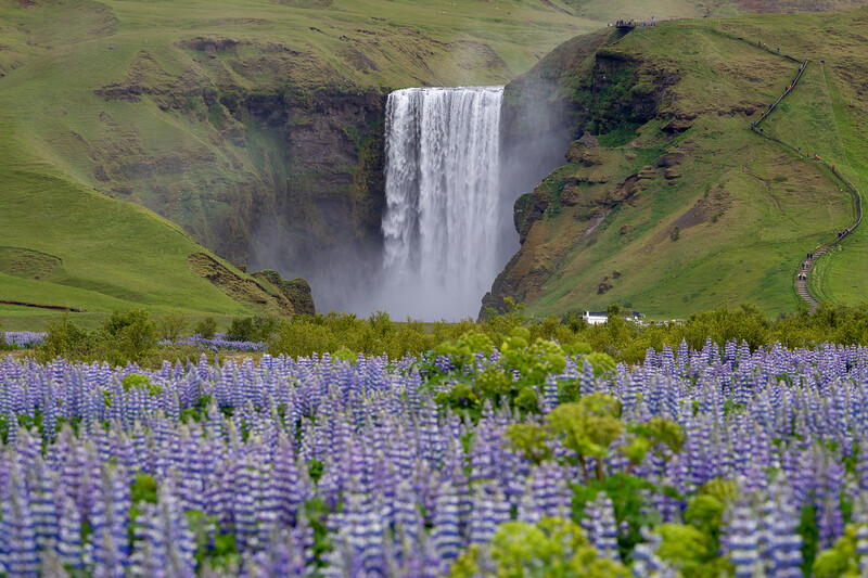 Skogafoss in June