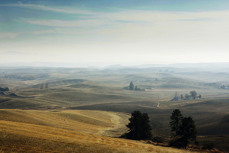The Palouse in Moscow, Idaho is photographed on Tuesday, November 3, 2009. (Young Kwak Special to the Pacific Northwest Inlander)