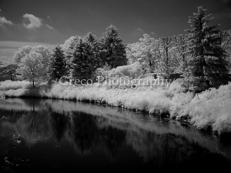Ludington State Park