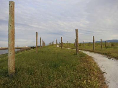 Mystic Pathway