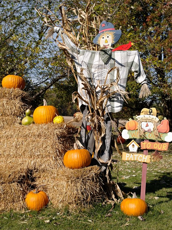 Decorations welcome visitors to a pumpkin patch.