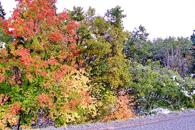 2011 Fall Colors107