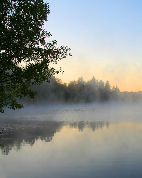 Deep Pond