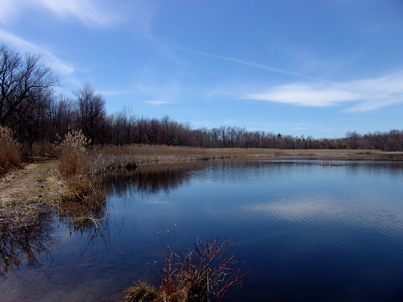 Quaker Pond